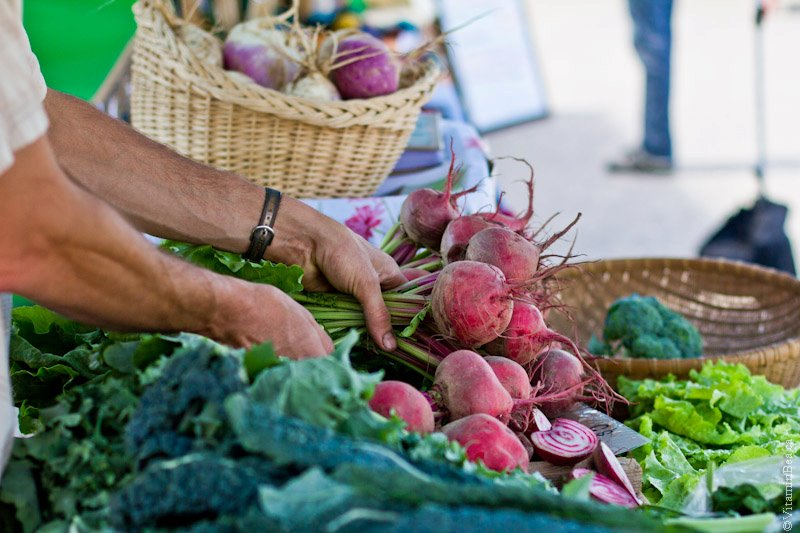 Farmers' Markets in the News