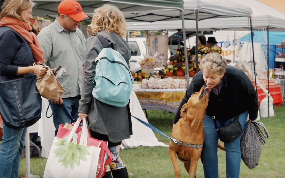 Video Series Highlights Farmers' Markets Across Nova Scotia