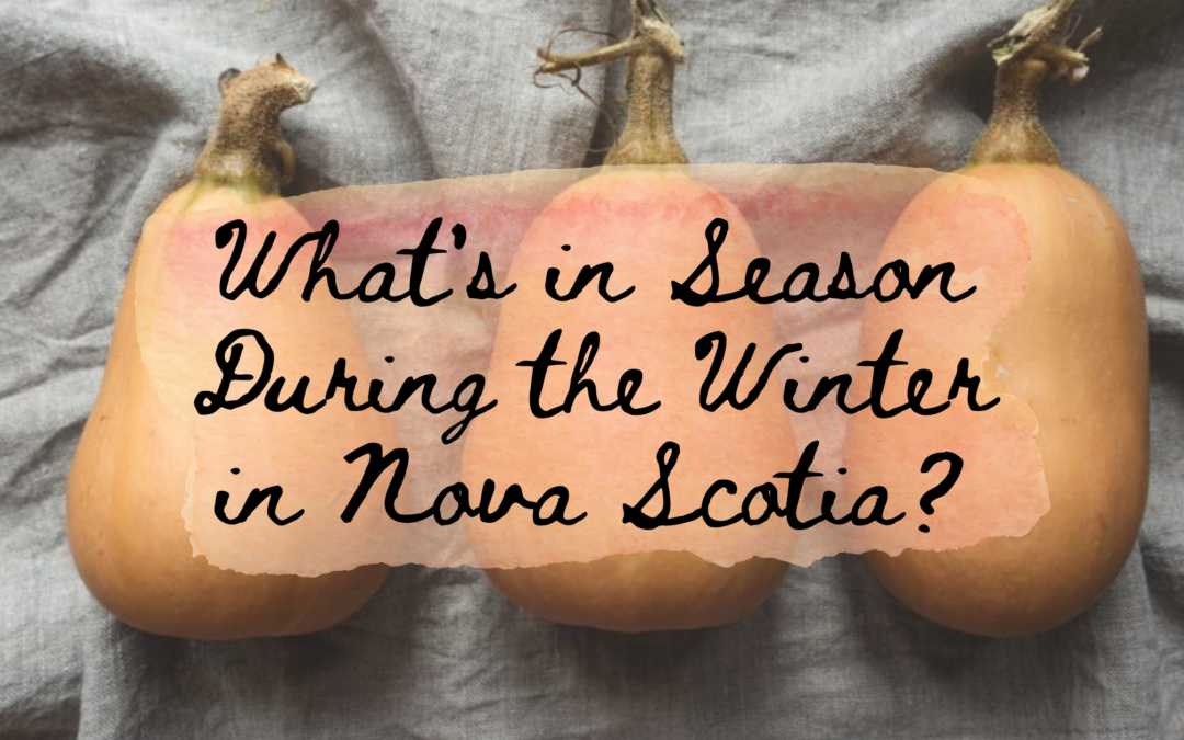 What's in Season During the Winter in Nova Scotia?