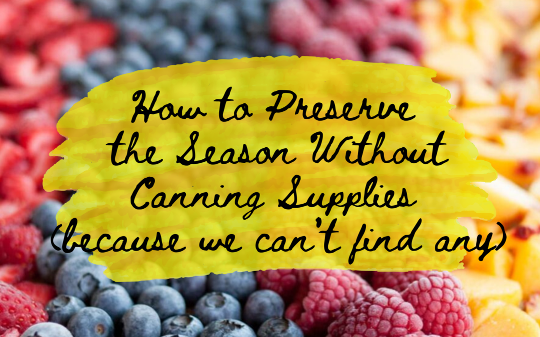 How To Preserve The Season Without Canning Supplies (because we can't find any)