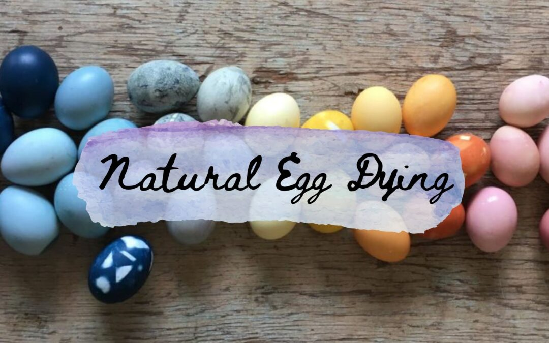 Natural Egg Dying Recipe