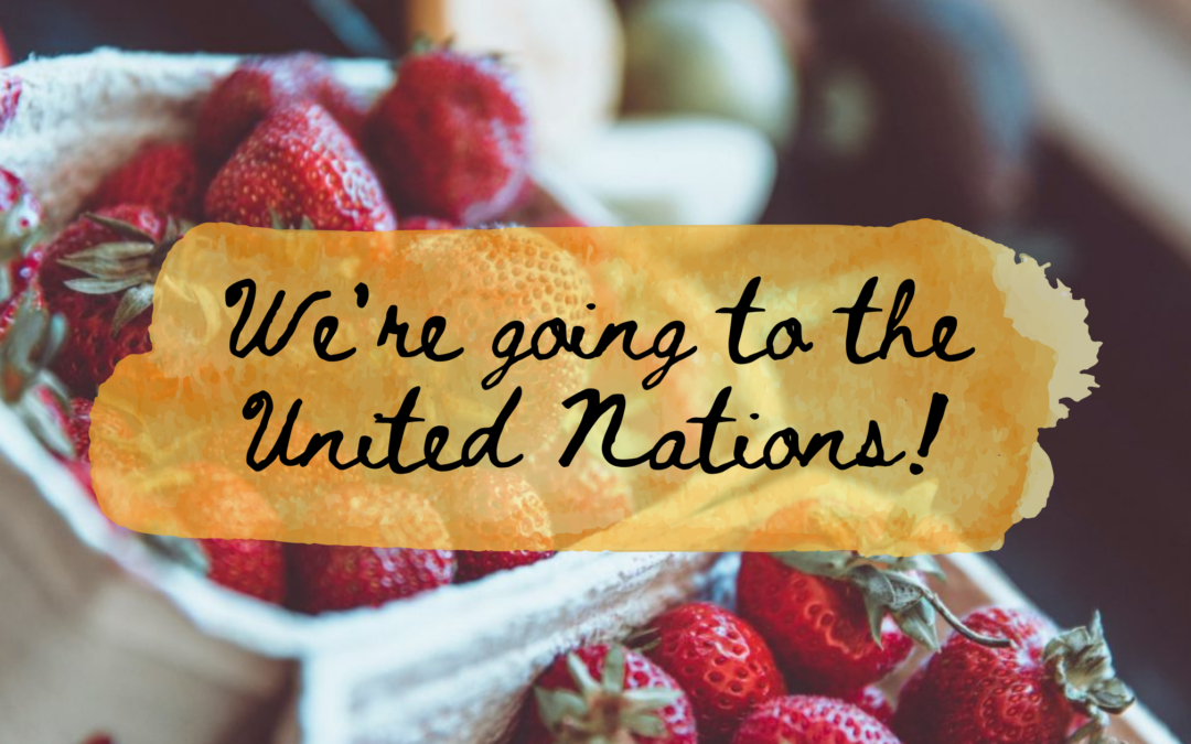Farmers' Markets of NS is going to the United Nations!
